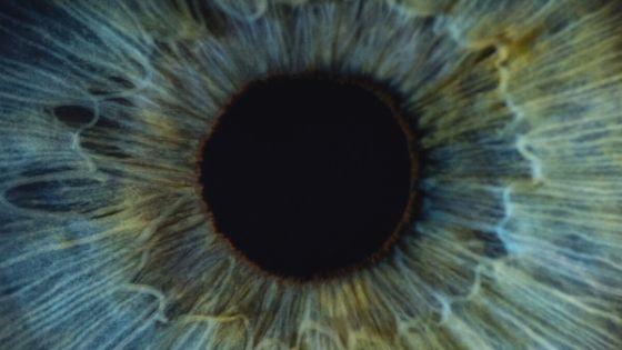 Titelbild Vitamin D Augen