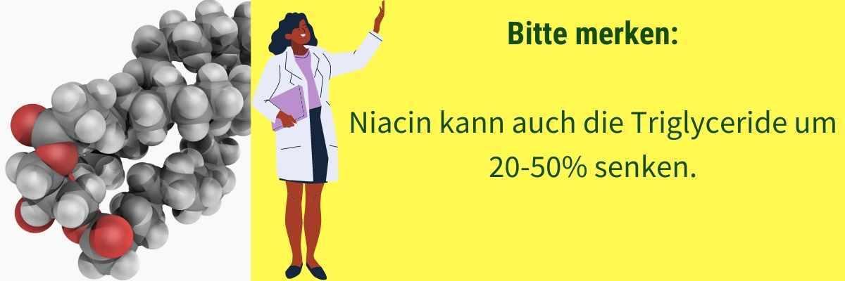 Niacin Wirkung Trigylceride