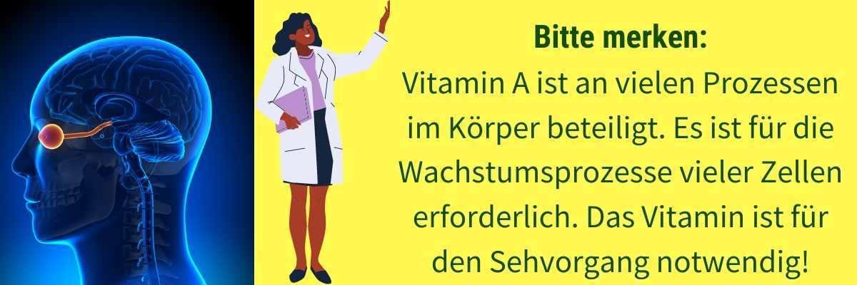 Wirkung Vitamin A