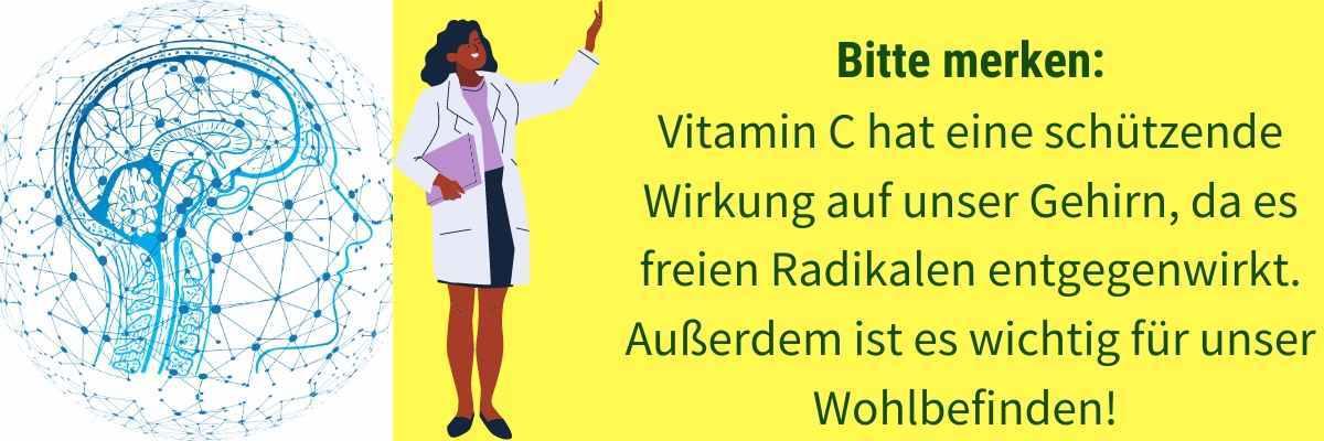 Vitamin C Wirkung Gehirn