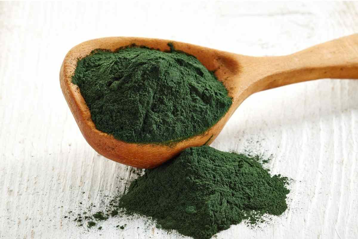 Omega-3-Lebensmittel-Algen