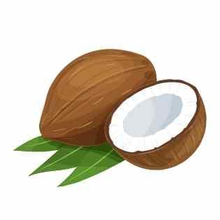 Energie Smoothie Zutat6 - Kokosnusswasser