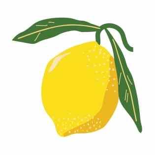 Energie Smoothie Zutat7 - Zitronen